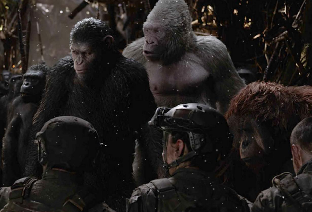 映画『猿の惑星:聖戦記』家族をやられた復讐心【ネタバレ感想】