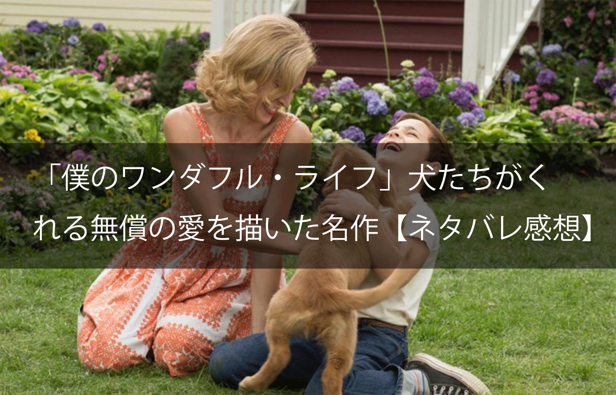 映画『僕のワンダフル・ライフ』あらすじから結末ネタバレ解説&感想評価