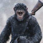 「猿の惑星」シリーズ:評価と順番&興行収入おすすめ一覧